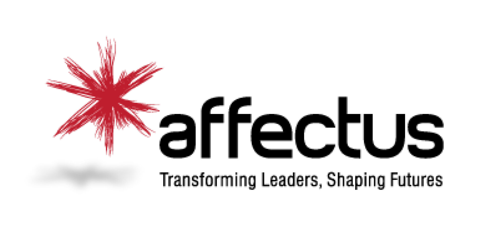 Affectus logo cropped